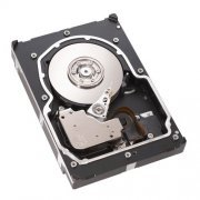 ST3300655LW HD SCSI Seagate Cheetah 300GB U320 15K.5 RPM